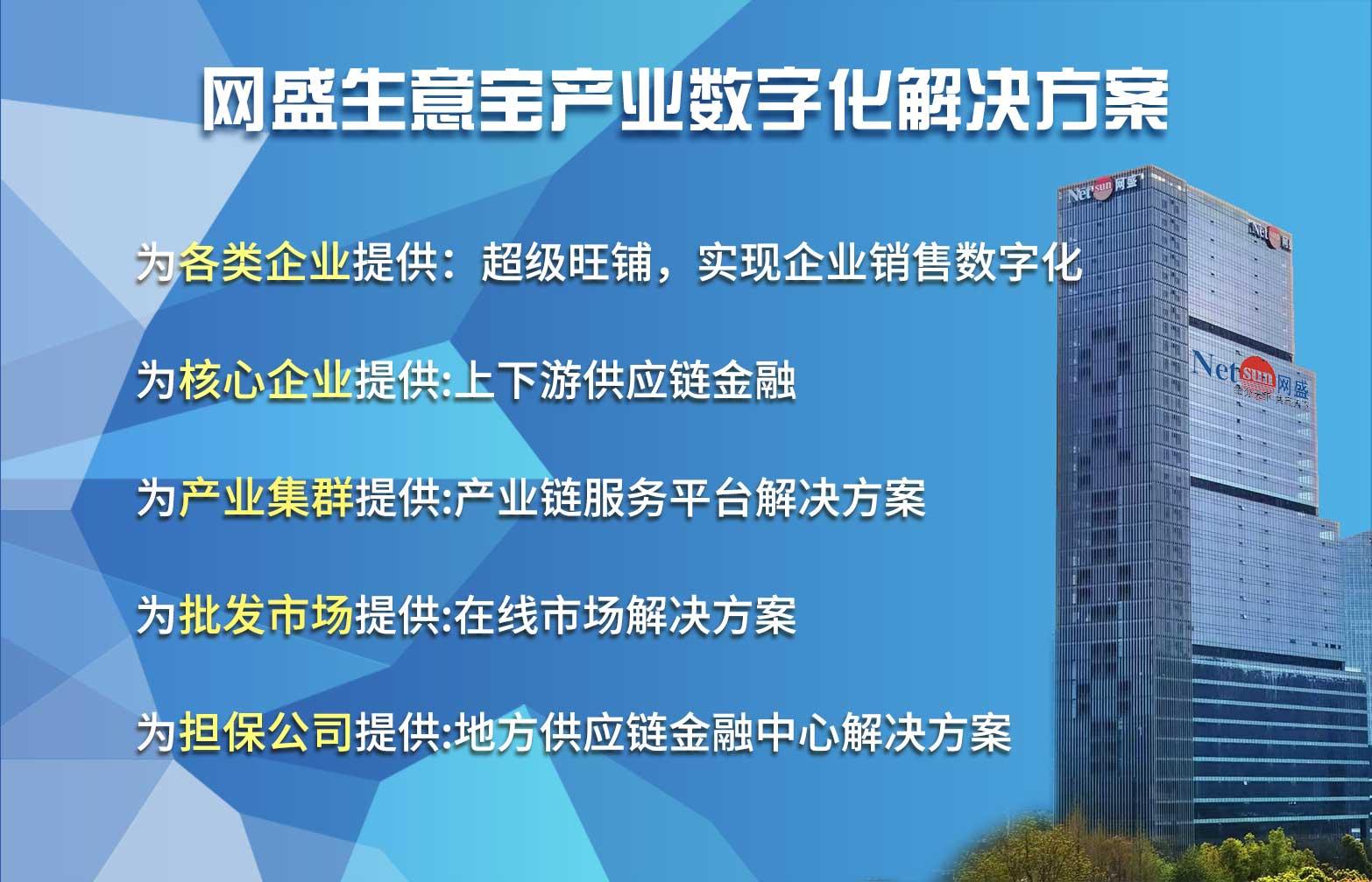 网盛生意宝产业数字化解决方案2(2).jpg